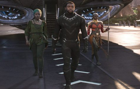 REVIEW: With cast and plot, 'Black Panther' leaps over Hollywood barriers