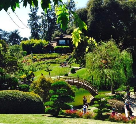 A day in the gardens is just a drive away