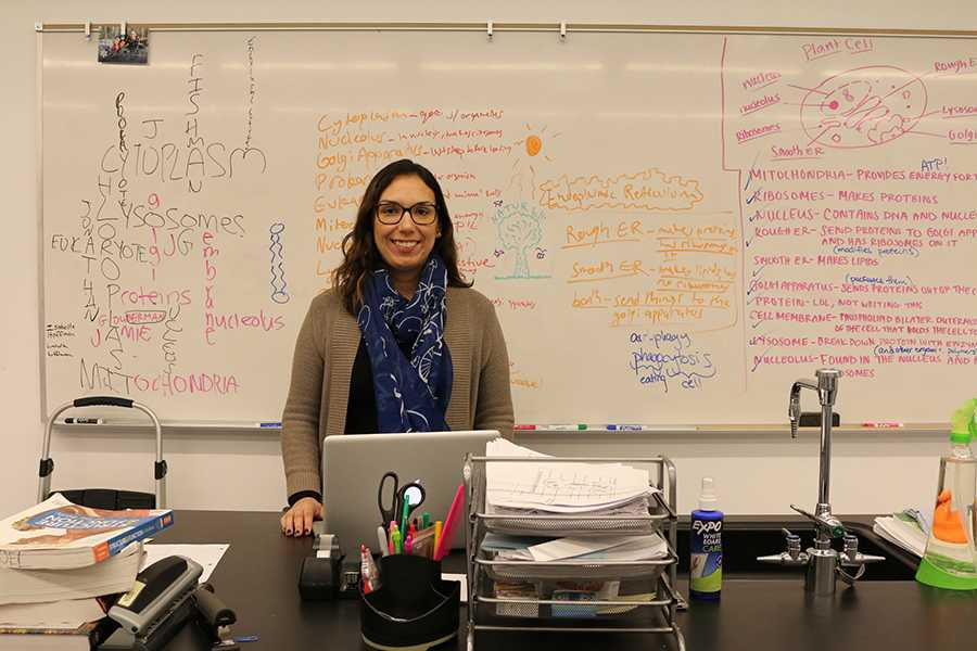 RESEARCH: Biology teacher Dr. Melissa Noel discovered one way that fetal alcohol syndrome leads to neuronal death and brain problems.