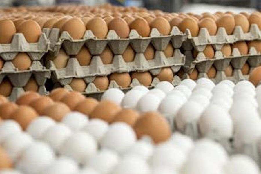 OLD: Most flu vaccines today are grown inside eggs, taking about six months. New egg-less method will take only two.