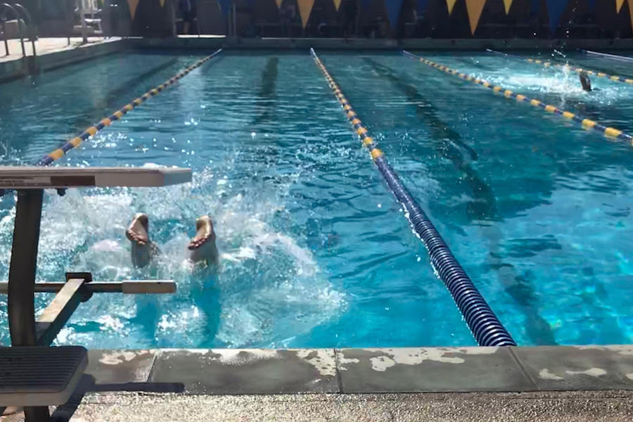 RACE: Firehawk feet breaking the water at UCLA's North Pool during last month's tournament.