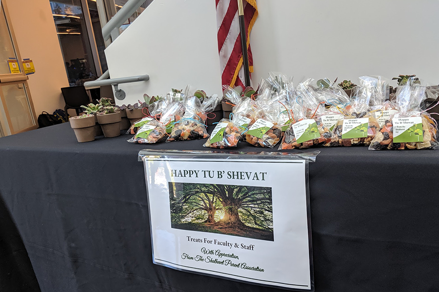 GREEN: Shalhevet's PTA provided nuts, dried fruits and indoor plants to faculty and staff in honor of Tu B'Shvat today. The holiday celebrates the new year of trees, and has become associated with appreciating rain and caring for the natural world.