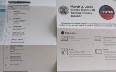 VOTE: Residents of Beverlywood and other areas received ballots to vote in the 30th State Senatorial district.