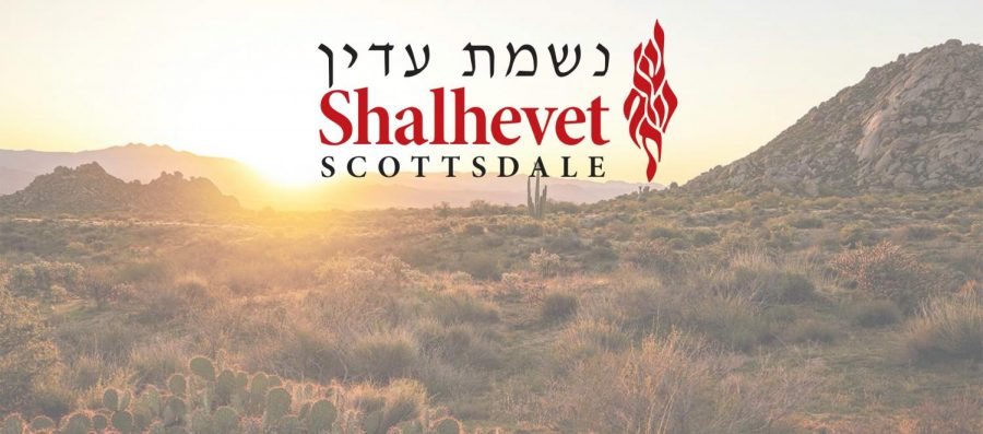 "DESERT: Part of the name for the new Phoenix campus is 'Nishmat Adin,' after Rabbi Adin Steinsalt, z""l. The planned school is using a version of Shalhevet's logo."